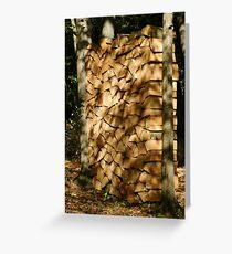 West Woods Light Greeting Card