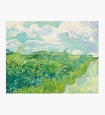 Vincent Van Gogh Green Wheat Fields, Auvers 1890  Photographic Print