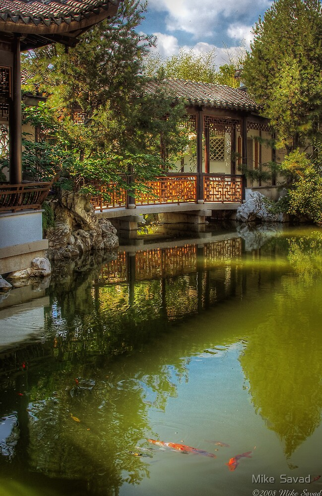 The Chinese Garden by Michael Savad