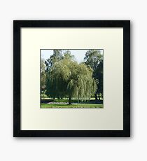 WILLOW - WEEP FOR ME! Framed Print