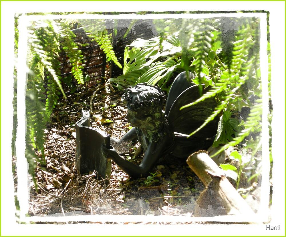 Garden Fairytales by Harri