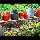 watering cans and terracotta pots by bellebuckley