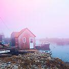 Coastal Fog by OLIVIA JOY STCLAIRE