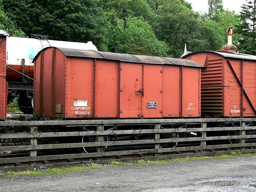Hazardous Cargo by Trevor Kersley