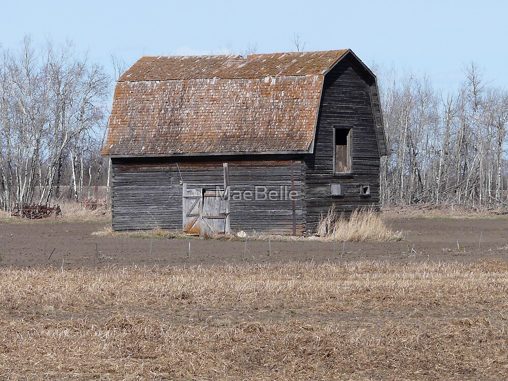 Old Barn by MaeBelle