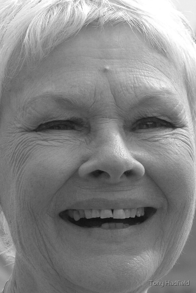 Dame Judi Dench number 5 by Tony Hadfield