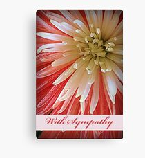 With Sympathy, Pink and White Fuji Mum Canvas Print
