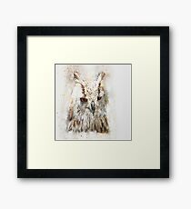 Abstract brown and white owl Framed Print