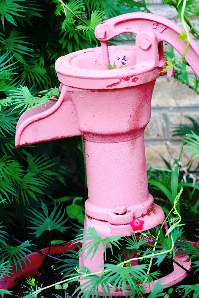 Country Pink by Lori Walton