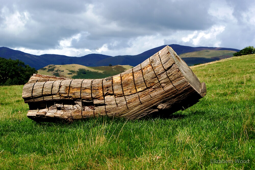 Log In The Hills by Elizabeth Wood
