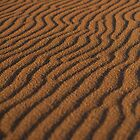 natural art, balmedie by codaimages