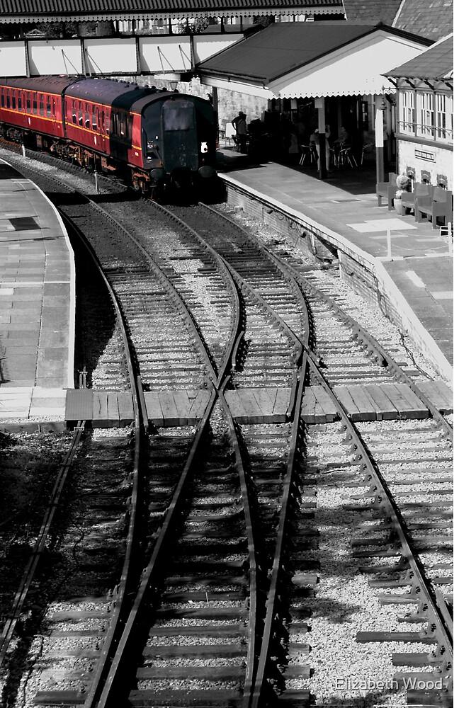 Train Ahead.. by Elizabeth Wood