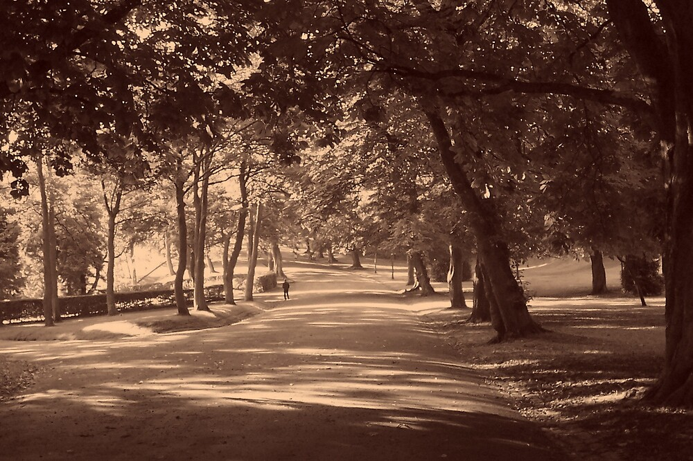 Morning Avenue by mikebee