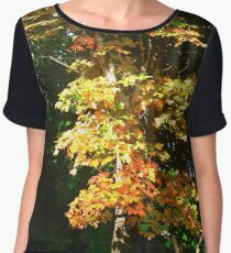 Sunlit Maple Tree Women's Chiffon Top