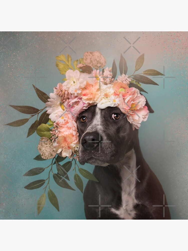 Flower Power, Max 2 by SophieGamand