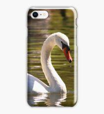 Mute Swan In Golden Waters iPhone Case/Skin