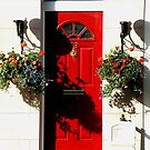 A Red Door by gothgirl