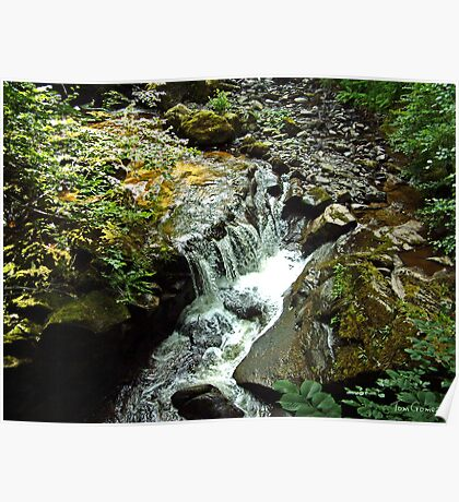 Tumbling Waters Poster
