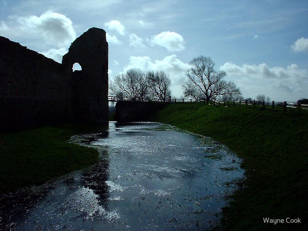 Pevensey Castle Ruins by Wayne Cook