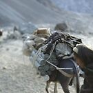 WEAPONS SMUGGLING, AFGHANISTAN by Ben Pendleton