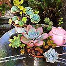 Garden Tabletop by Barbara Wyeth