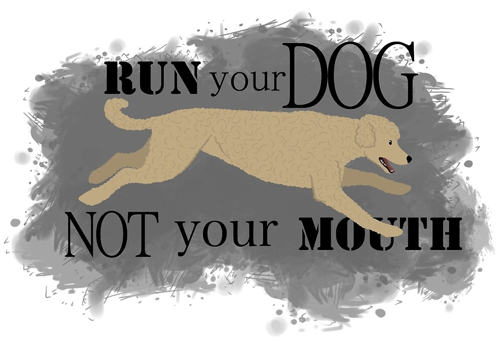 Run Your Dog Not Your Mouth Poodle apricot  by Rhett J.