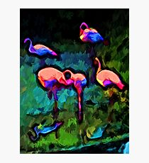 Rainbow Pink Flamingos with some Blue and Green Photographic Print