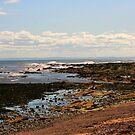 The Shore by Forfarlass