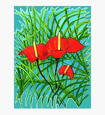 TROPICAL RED FLOWER AND PALM Photographic Print