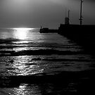 Pier at Seahouses by gordy