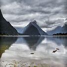Milford Sound by Claire Walsh