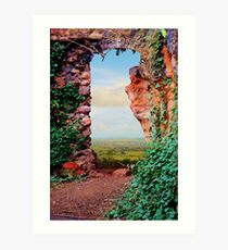 Through the Garden Art Print