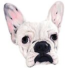 Frenchie Aggie by Apatche Revealed