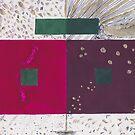 Farming Colour Studies #1 by Zanli de Jager