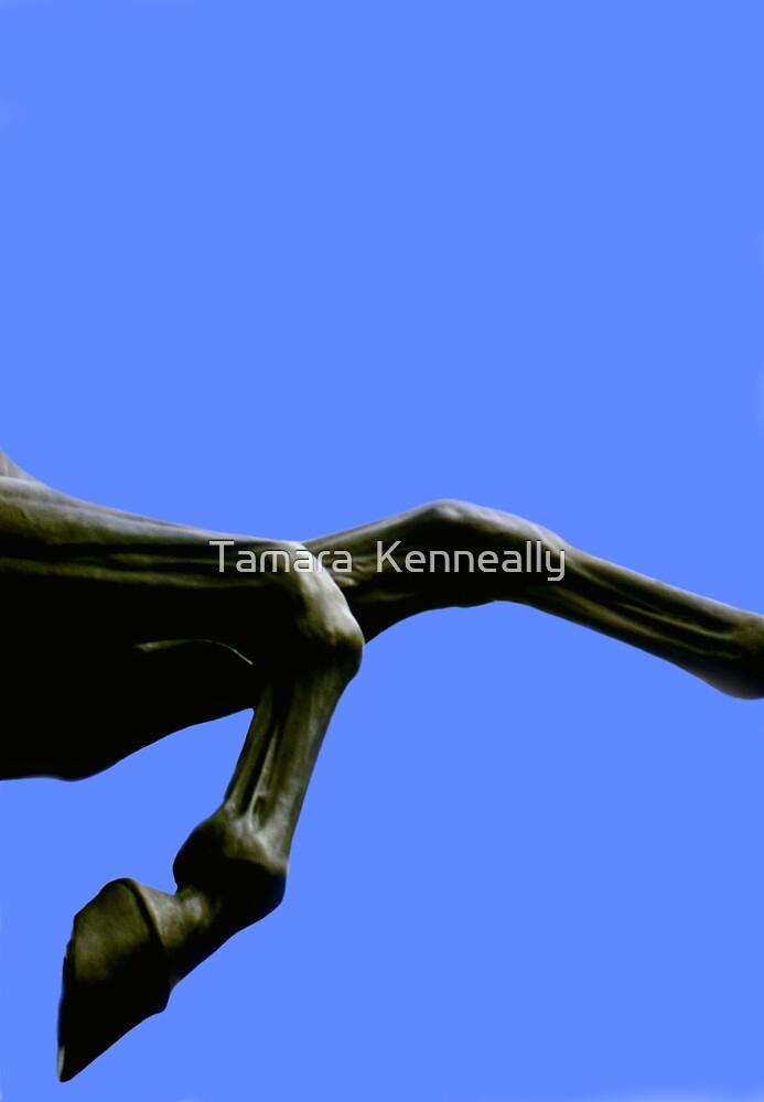 Statue  by Tamara  Kenneally