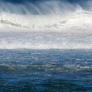 Great White Thunder by Bev Woodman