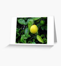 The Lemon Greeting Card