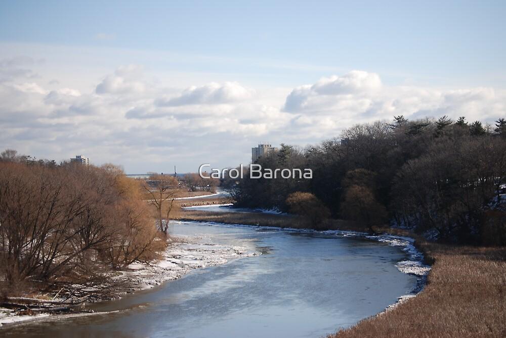 A Curvy Creek by Carol Barona
