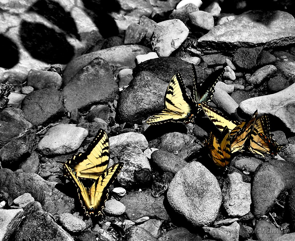Stone butterflies 2 by MsMichelleD