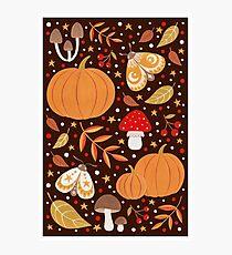 Autumn elements Photographic Print