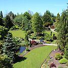 Looking Over Queen Elizabeth Park Vancouver Canada by AnnDixon