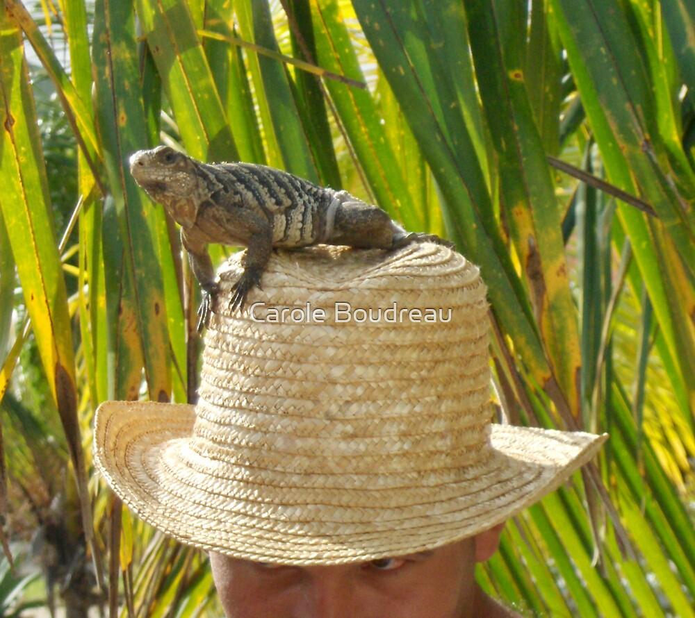 Lizard Hat  by Carole Boudreau
