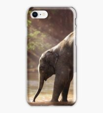 ELEPHANT FAMILY iPhone Case/Skin