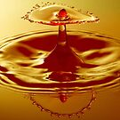 Golden Water Splash by Mark Pelleymounter