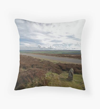 View from the site of the new Danby Beacon Throw Pillow
