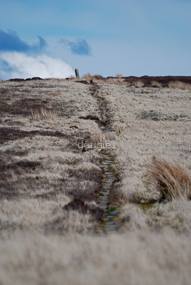 An Ancient Trod Way on Lealholm Moor by dougie1
