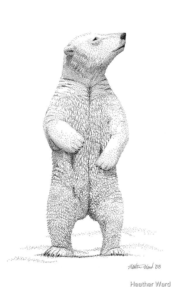 Polar Bear Pointillism by Heather Ward