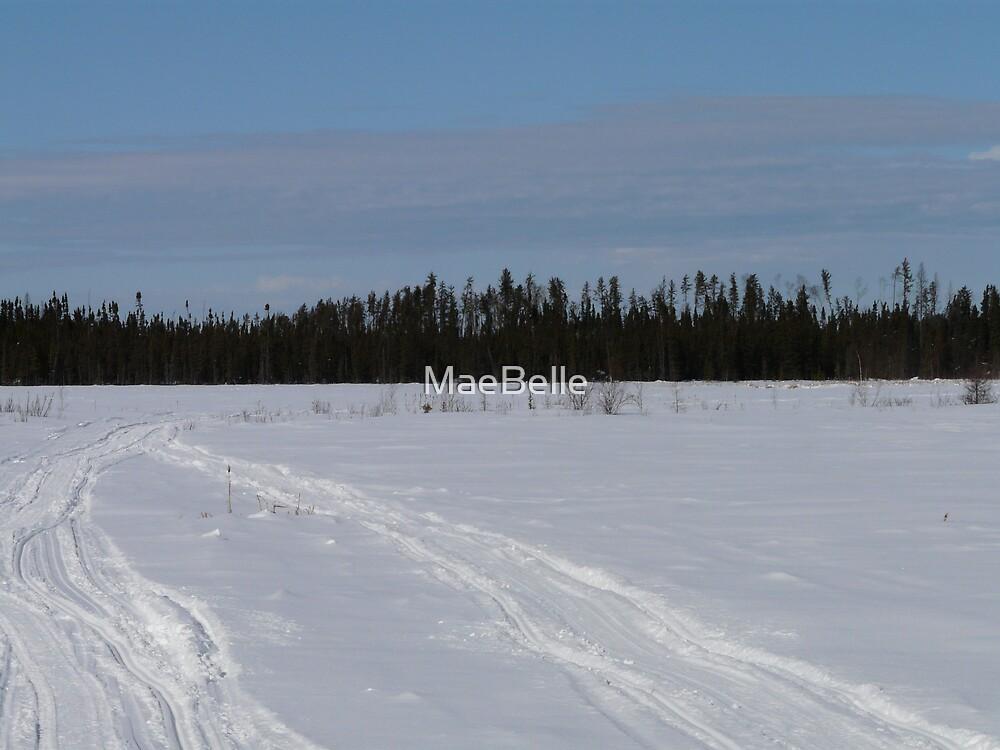 Across the Frozen Lake by MaeBelle