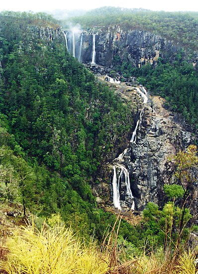 Blencoe Falls in flood - North Queensland by Paul Gilbert