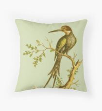 Swallod Tail King fisher - Bird HD vintage image from encyclopedia number 17 Throw Pillow